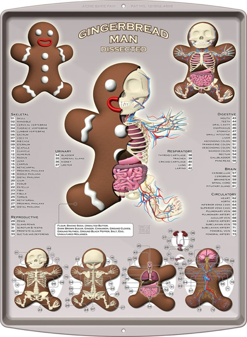 gingerbread-man-dissected-20090709-083248