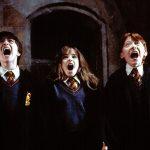 Harry Potter e la pietra filosofale… in concerto!