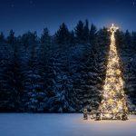 Il pianeta degli alberi di Natale di Gianni Rodari
