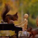 Anche gli scoiattoli (pazzi) festeggiano Halloween 🎃  Ecco come
