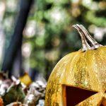 Intervista esclusiva a Jack o' Lantern 🎃  la vera storia di Halloween
