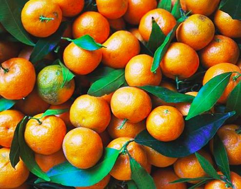 mandarini per ghirlanda