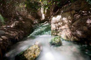 Le acque delle terme di Segesta