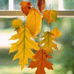 Decorare le finestre con le foglie secche