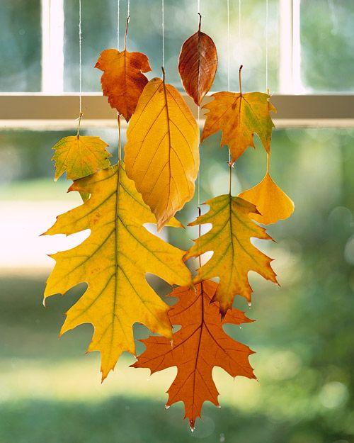 decorare finestre con foglie secche